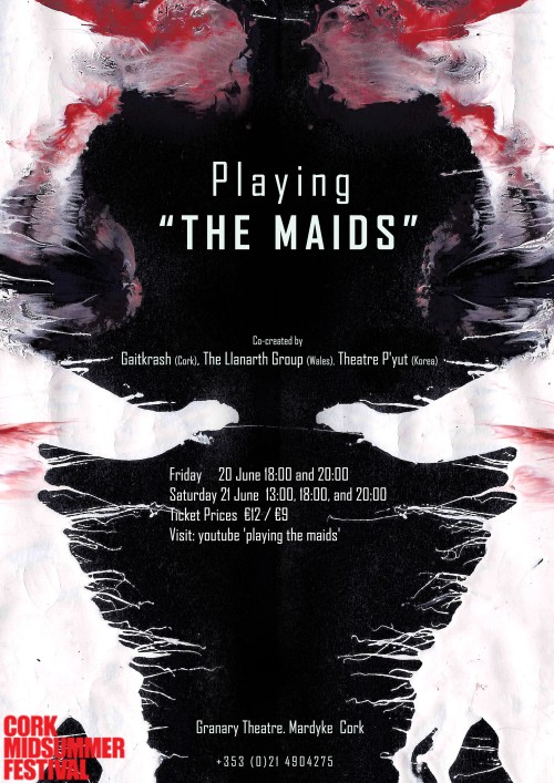 Image for Playing the Maids by Mick O'Shea